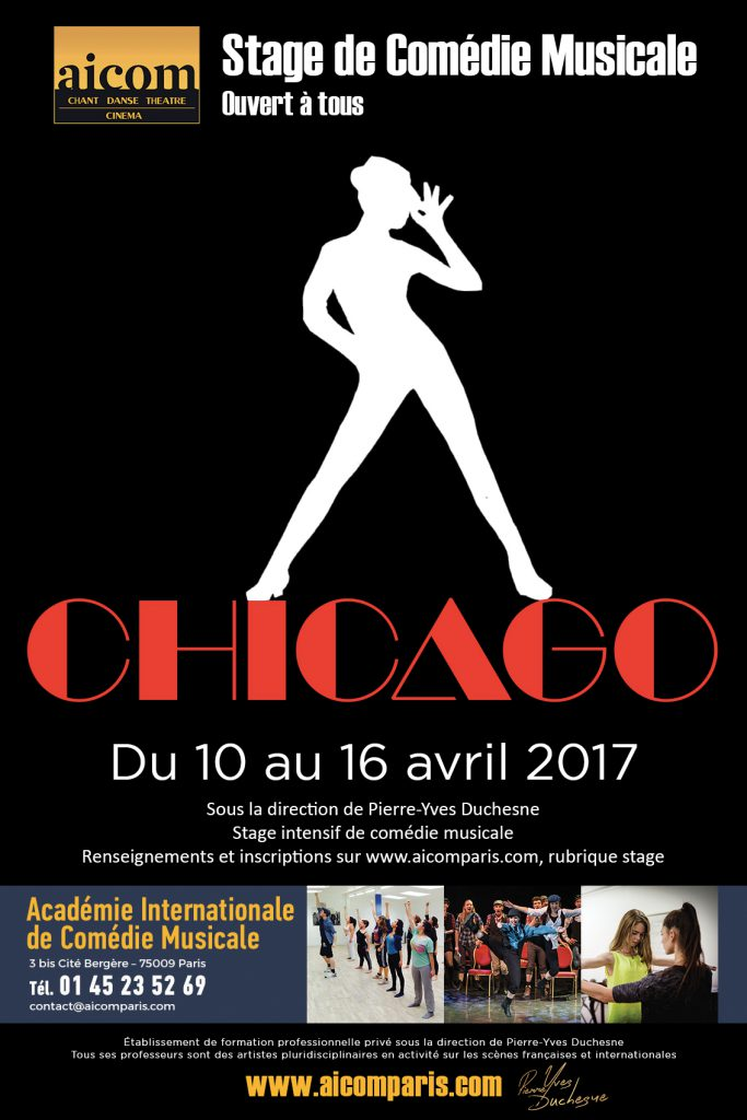 affiche-stage-chicago-avril-2017-new